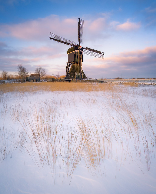 Snow and the Windmill