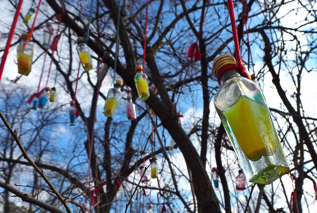 hey kids, it's a bottle tree