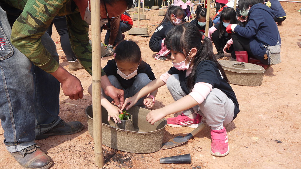 金門植樹節(12日)小學生共同於斗門社區用水寶盆種下樹苗。黃思敏攝