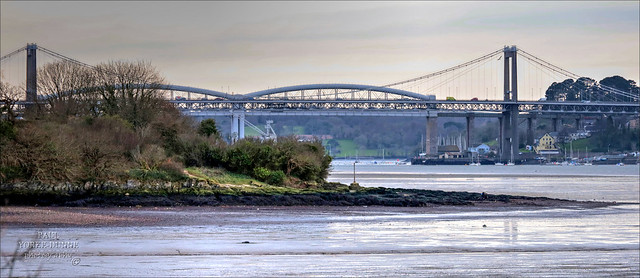 Tamar Crossings from Warleigh Point, Plymouth