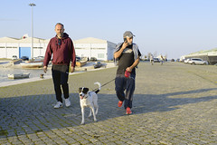 Walking the dog  #lisbon #portugal