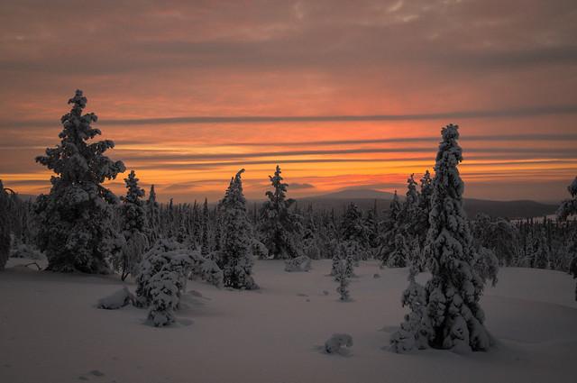 polar night colors in Lapland
