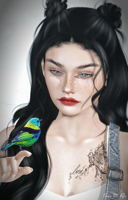 Broken Wings..