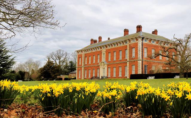Daffodils at Beningbrough Hall