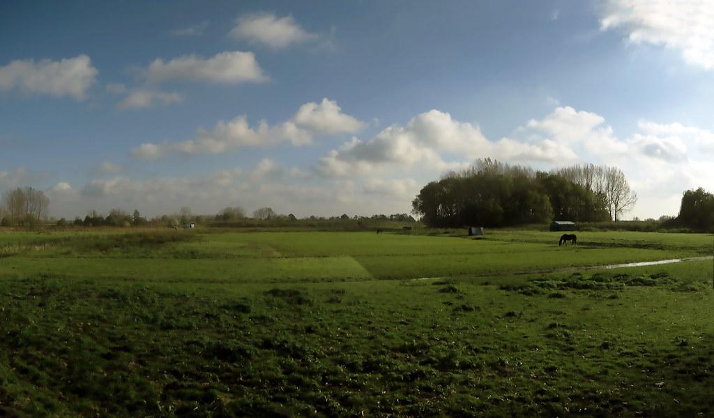 Landscape at Waasmunster - Belgium