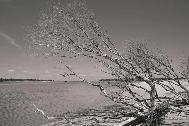 Matanzas river inlet. Crescent Beach, Florida