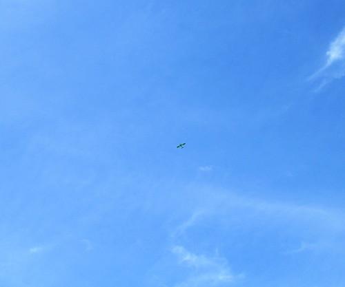 Small Aeroplane 1