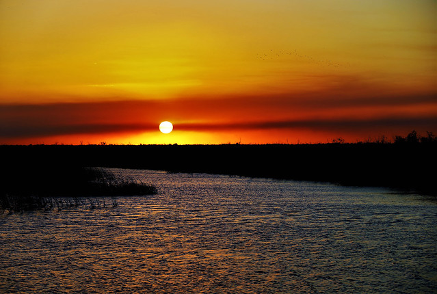 Everglades Sundown