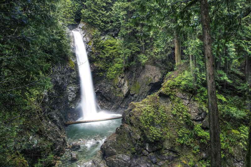 The Redwood Falls