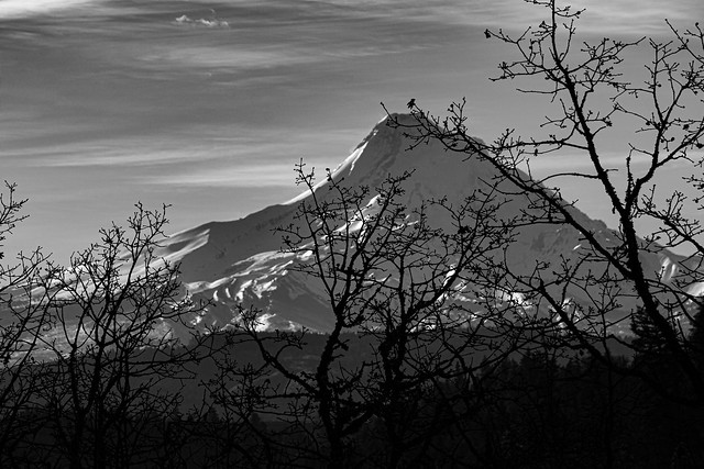Mount Hood Caress