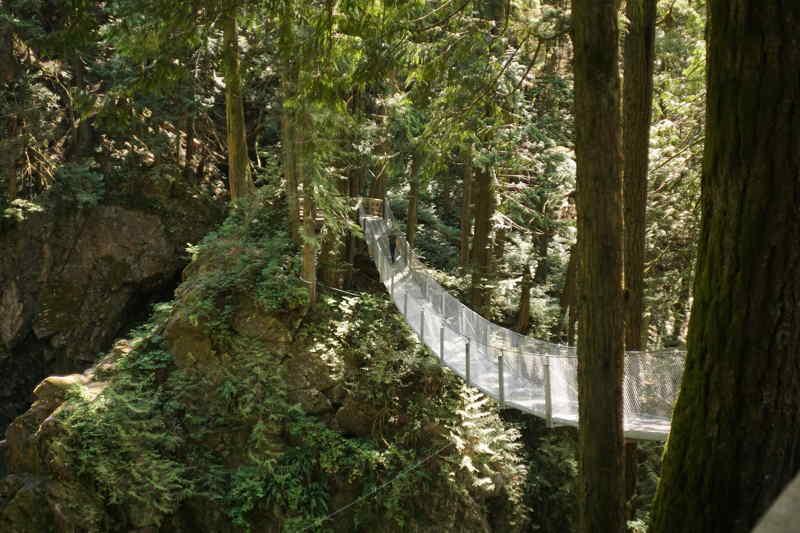 Chasing Waterfalls house hanging bridge