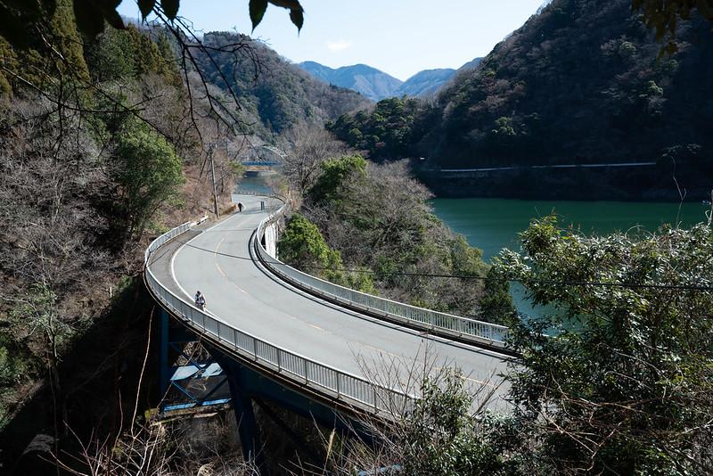 丹沢湖の道が見える