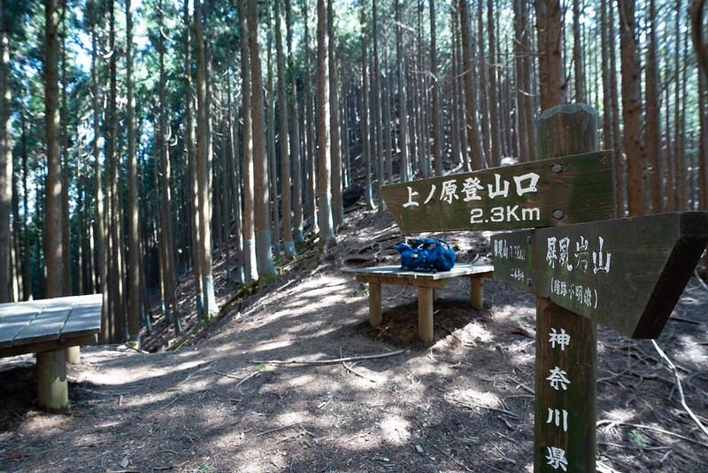 上野原登山口へ下山する