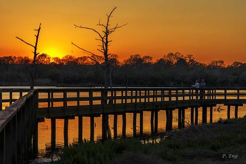 scenery composition photography outdoor nature mirrorless sunset fishing armandbayou bayou texas