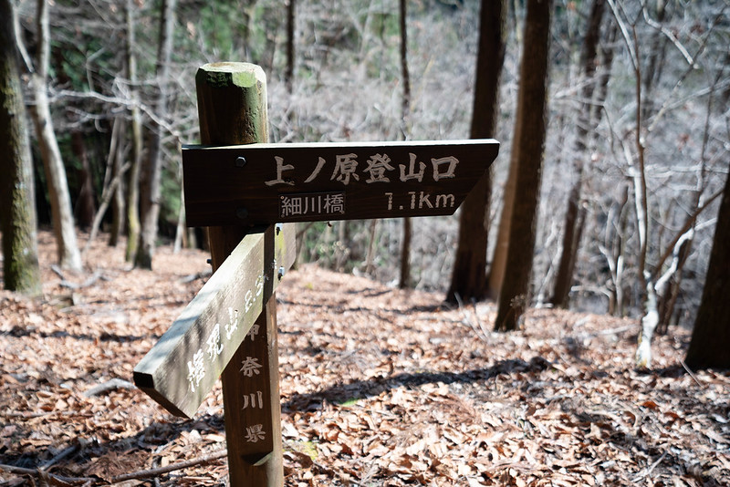 上野原登山口へ
