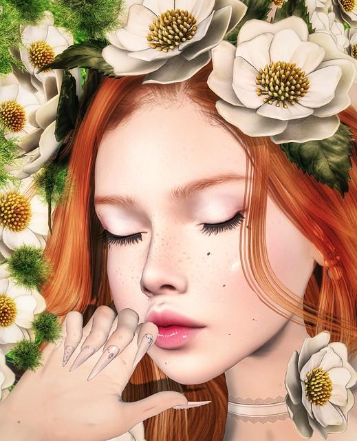 Pryce: Bloom of Spring ❤