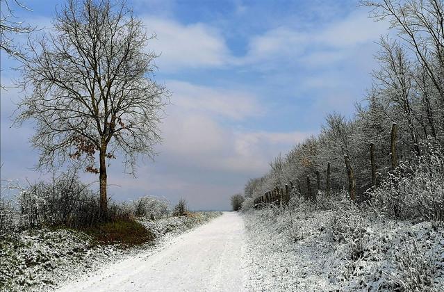Márciusi tél a határban (Ják)