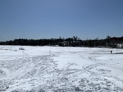 The sledding hill, Cole Harbour Common