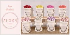 ACORN Flower Boxes