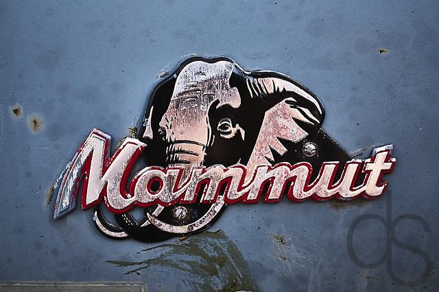 Wer sagt, Mammuts seiein ausgestroben? --- Who says mammoths are extinct?