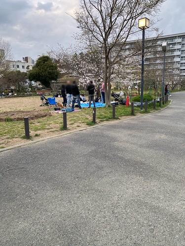 桜 サクラ 目黒川 中目黒 2021/3/20