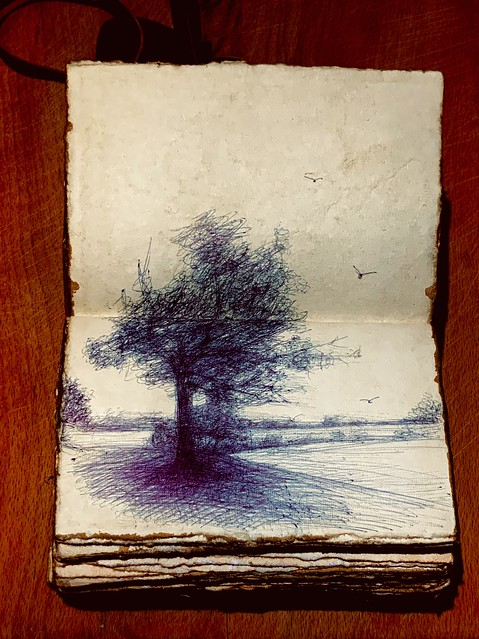 2021 new sketch book. Tree study in a landscape. Ballpoint pen drawing by jmsw on recycled card.