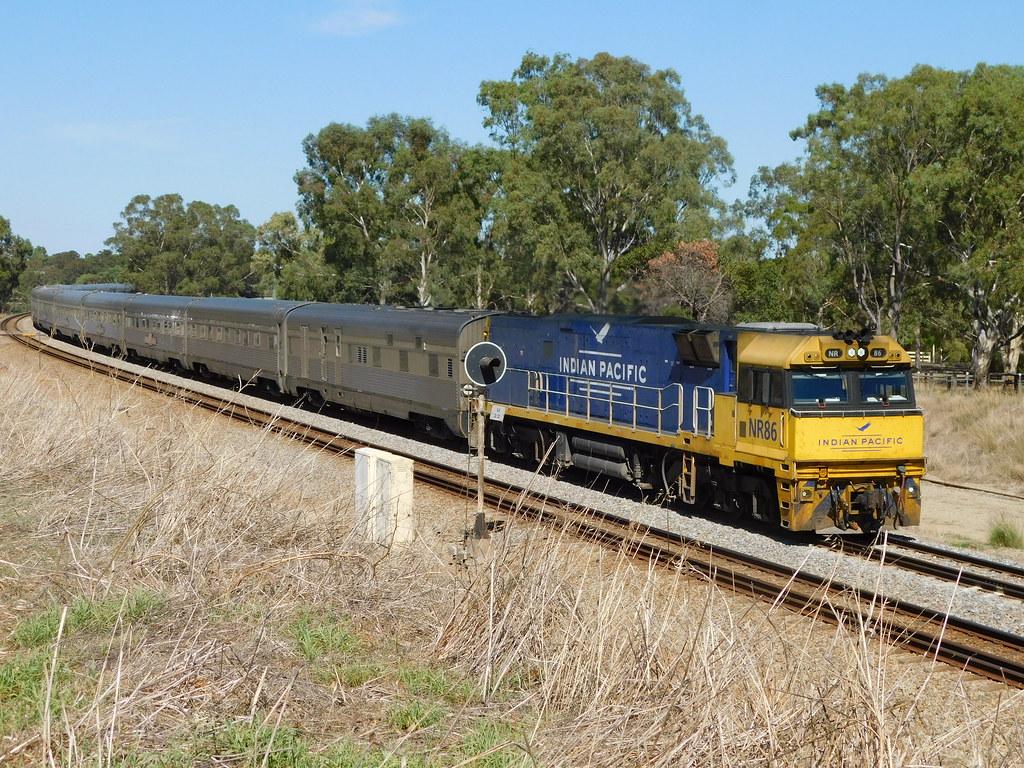 NR86 heads the Indian Pacific through Brigadoon by Western Australian Railway Photos.