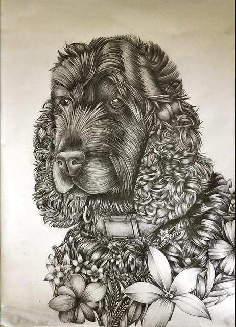 _Benji the Dog_ by Georgia Goodbody