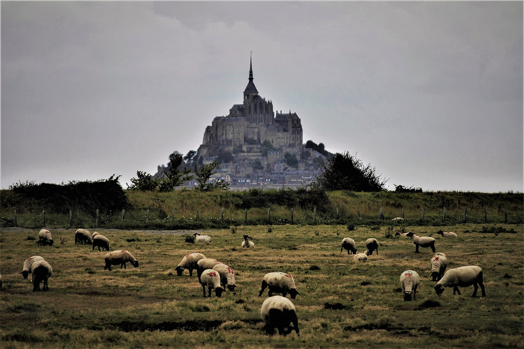 Mont Saint Michel (Normandia)