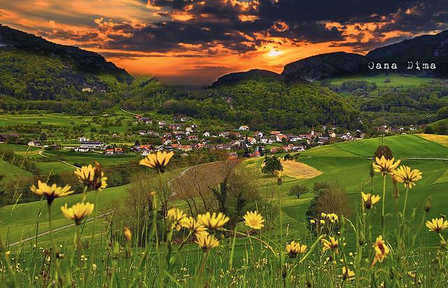 #Switzerland #PhotoOfTheDay #Photography #Nature #Green #Sunset #Flowers By #OanaDima