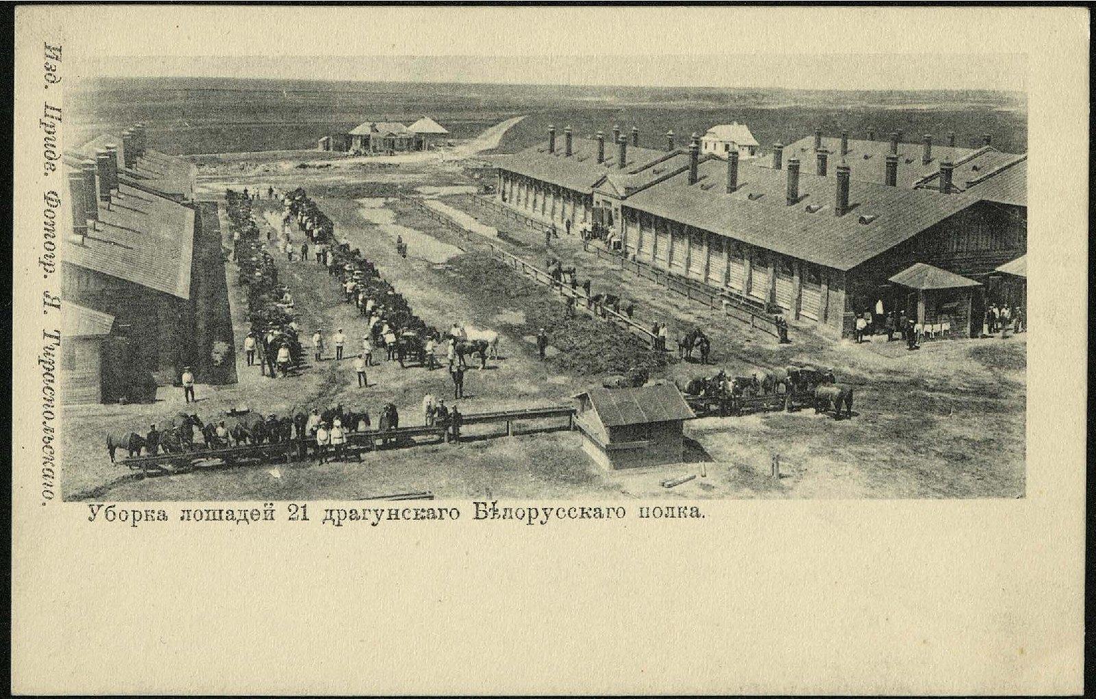 Уборка лошадей 21 драгунского Белорусского полка