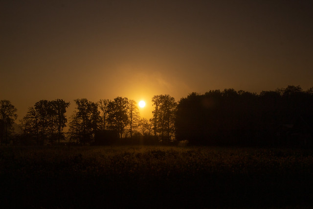 Autumn Morning, Rosendahl, Germany