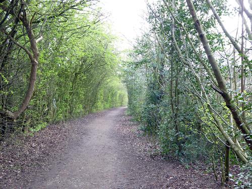 Leegomery Walk