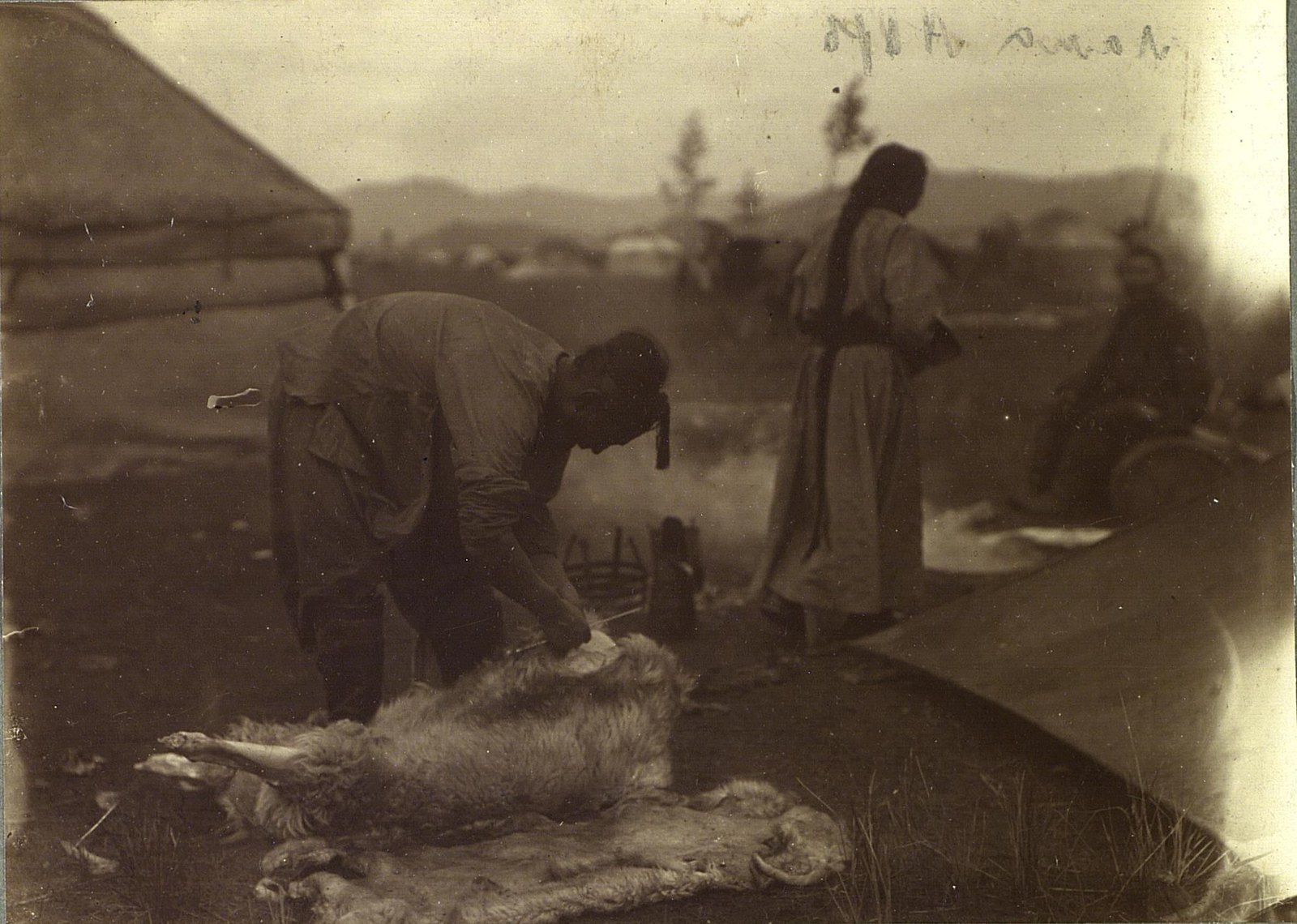 Колотье барана