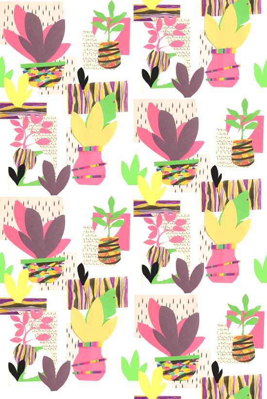 2nd collage of pot plants