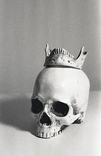 Still life with a skull | by Alena Shminke