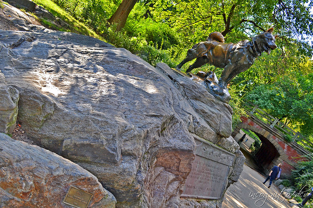 Statue of Balto in Central Park Manhattan New York City NY P00838 DSC_0763