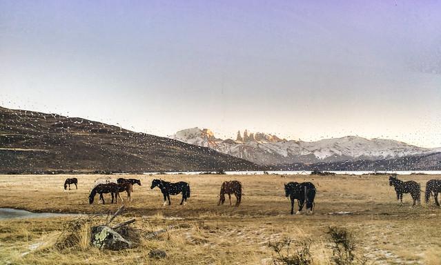 Parque Nacional Torres del Paine, Chile 2018