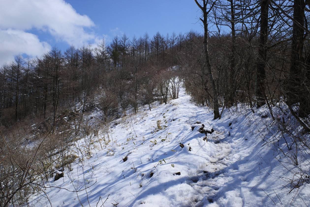 飯盛山~平沢山 雪の登山道