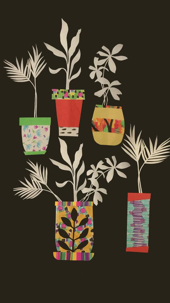 collage of pot plants
