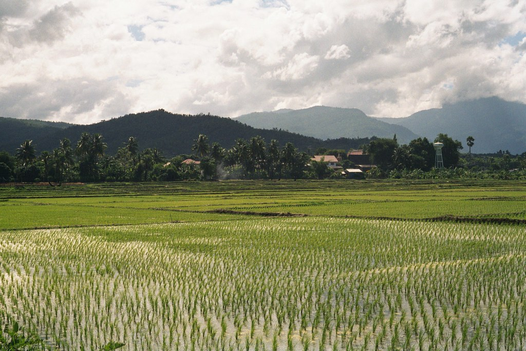 Chiang Mai, 08/2001