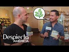 """El Dr. Rivera encontró """"Santos Remedios"""" en tiendas naturistas"""