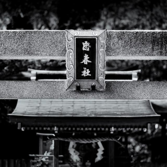 The shrine gate