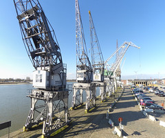 Cranes on Rijnkaai, Antwerp