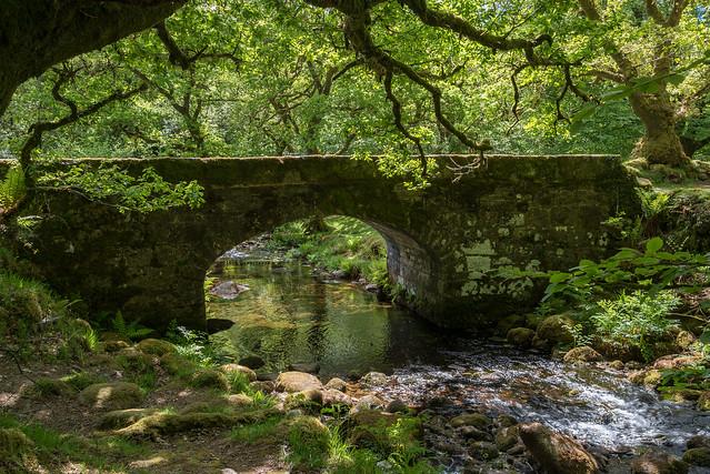 The bridge in spring - NK2_9881