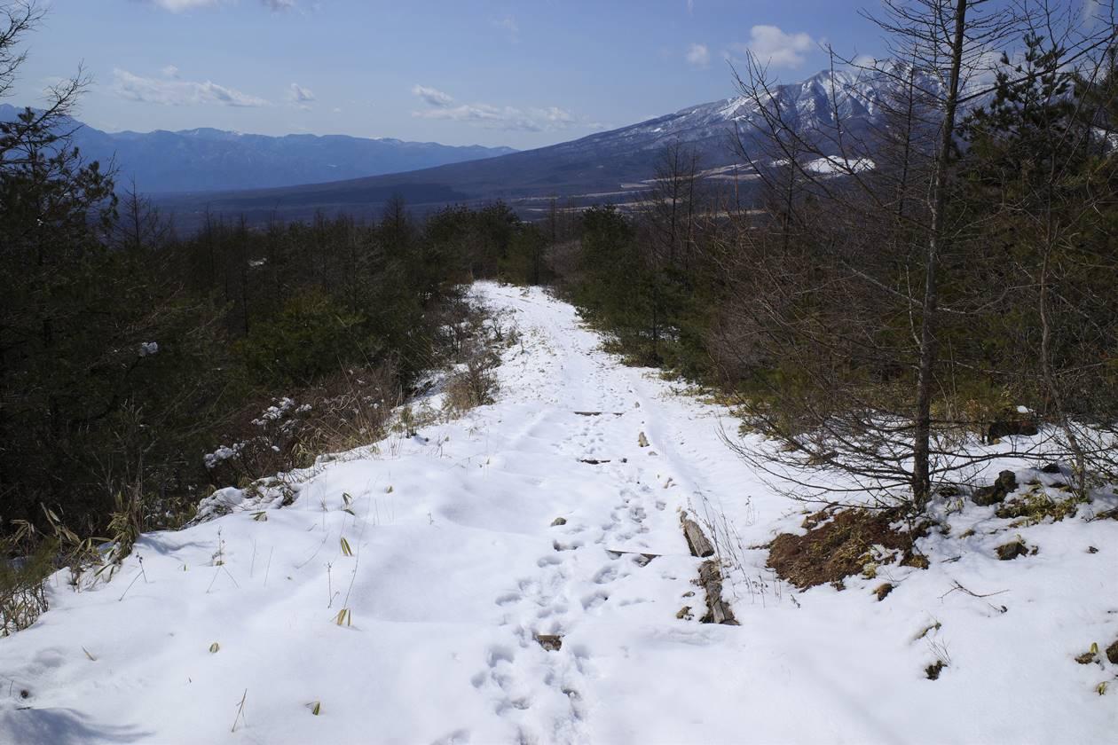 飯盛山の登山道