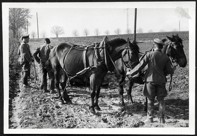 ArchivTappen23AAl2g134 Motorisierung, Wunsiedel, 1937