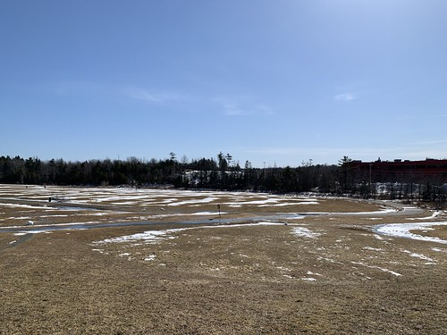 Cole Harbour Common: equinox thaw | by brownpau