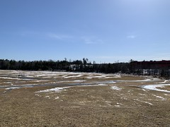 Cole Harbour Common: equinox thaw