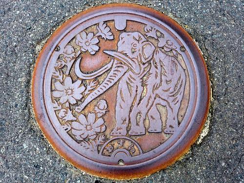 Shinano Nagano, manhole cover (長野県信濃町のマンホール)